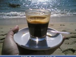 Poranna kawa w doborowym towarzystwie