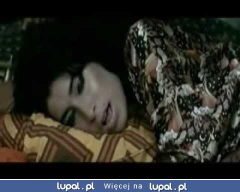 Amy Winehouse i kot NONONONO