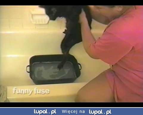 """Kot mówi """"NIE"""" kąpieli"""